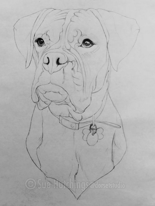 primary drawing of lola by sue hutchings